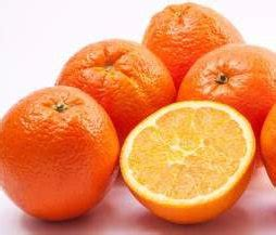 what can pomeranians eat can pomeranian eat oranges feeding orange slices
