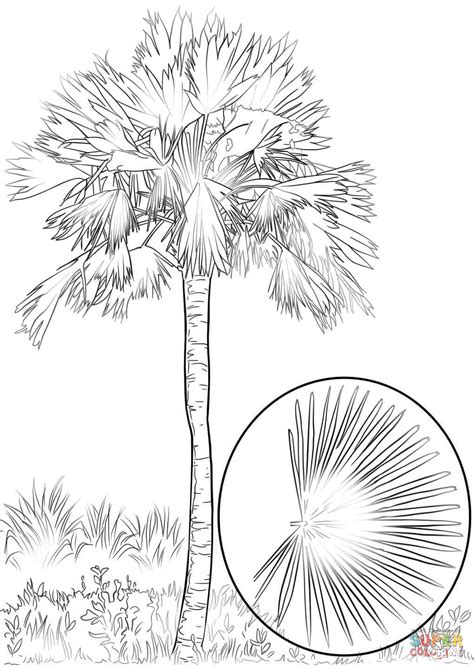 coloring page palm leaf palm leaf coloring coloring coloring pages