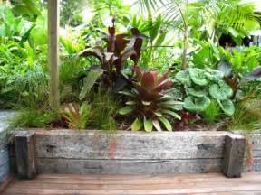 balinese inspired garden in devonport sub tropical