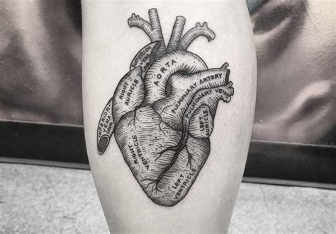 anatomical tattoo 39 inspiring anatomical tattoos tattoobloq