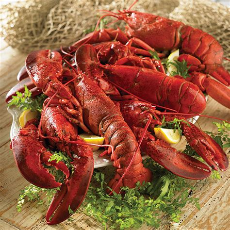 best lobster lobster recipes the best lobster recipes