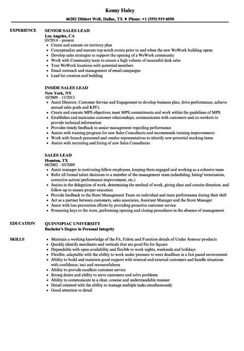 sales lead resume sles velvet