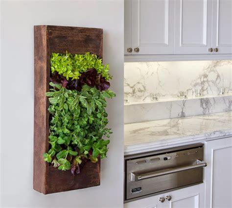 phenomenal indoor herb gardens    ideas