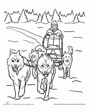 dog team coloring page dog sled worksheet education com
