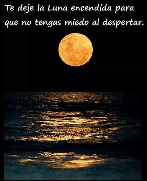 imagenes romanticas bajo la luna pin by bego r on luz de luna pinterest