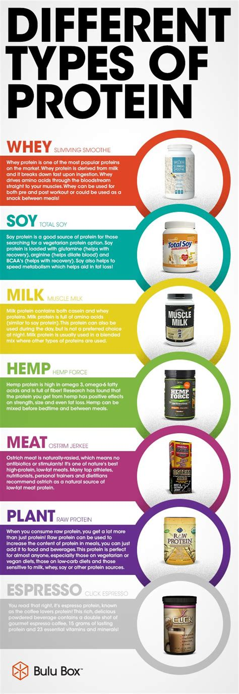 6 protein categories different types of protein infographic interesting