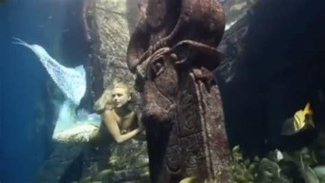 Kostum Hewan Ikan Hiu foto fraser putri duyung di dunia nyata yang