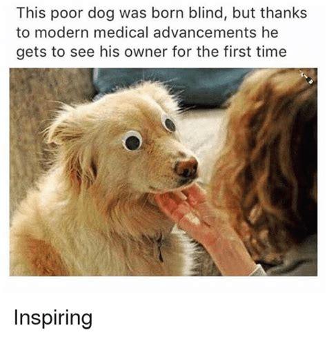 poor dog  born blind    modern medical