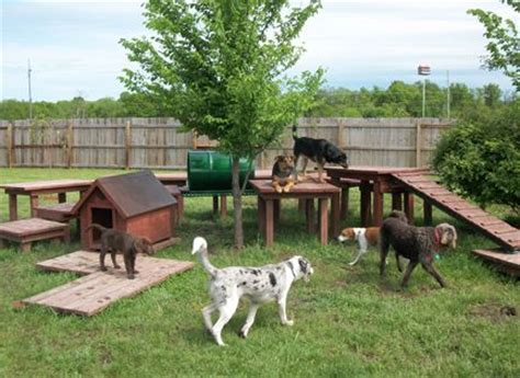 backyards for dogs best 25 dog playground ideas on pinterest