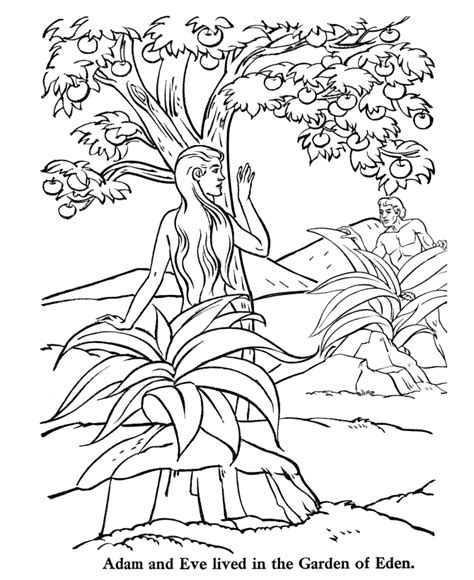 house  garden coloring pages coloring pages wallpaper