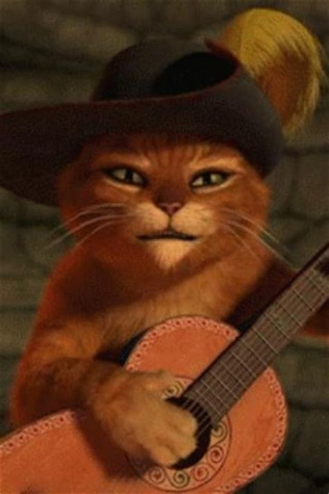 cat guitar wallpaper download cat play guitar live wallpaper for android appszoom
