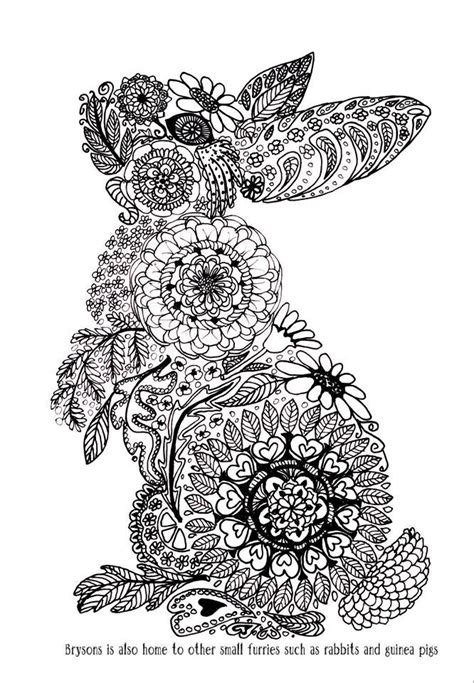 coloring pages for adults bunny 10 images about animals to color on pinterest coloring
