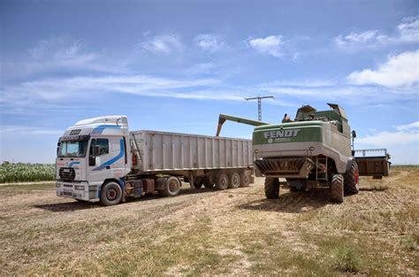 trigo estero cosechando trigo estero con la fendt 6300c farm