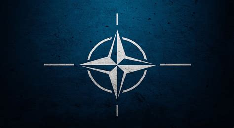 nato emblem nato join anti is coalition voice of people today