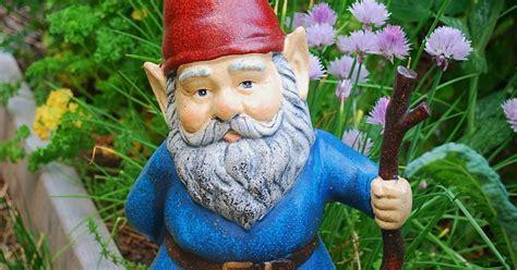 garden gnomes anyone serenity in the garden garden gnomes anyone