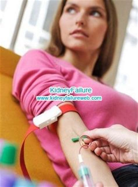 s creatinine report polycystic kidney vs normal kidney in polycystic kidney