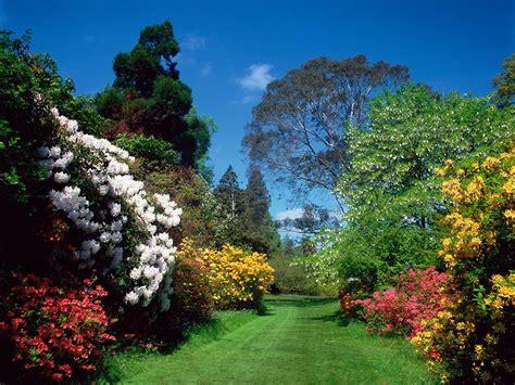 mount usher gardens arboretum and avoca garden caf 233 in