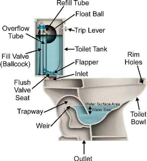 las vegas toilet plumbing repair dms plumbing