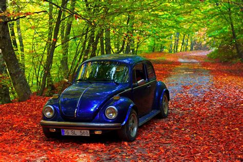 car with tree image car cool images tree turkey classic colourfull forest bursa amazing landscape hd