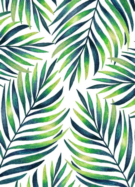 background pattern leaves tropical leaves white pattern watercolor patterns