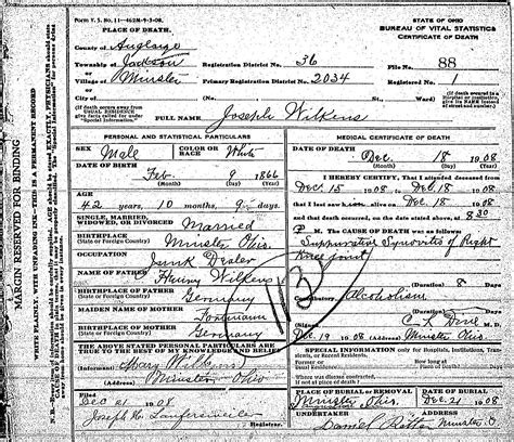 St Helena Birth Records Wilkens The Spiraling Chains Schroeder Tumbush Family Trees