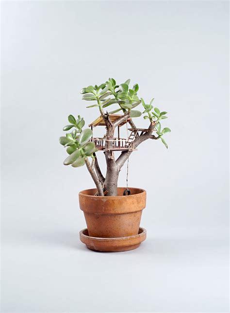 mini house plants des cabanes miniatures dans les plantes 2tout2rien