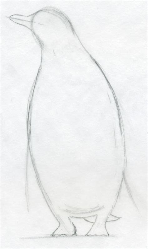 easy sketches how to draw a penguin