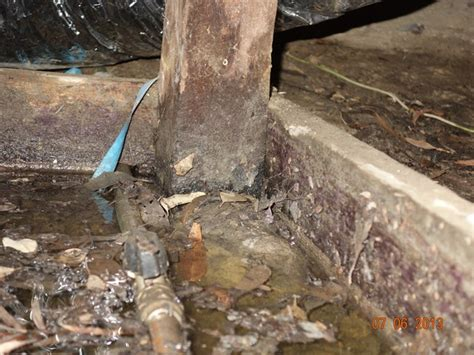 Rock Plumbing by Building Inspection In Black Rock Plumbing Defects Mr