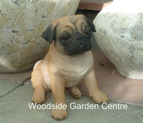 pug garden ornaments resin real large pug garden ornament woodside garden centre pots to inspire