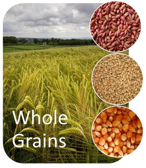 whole grains unrefined go for the whole grains alan fitness