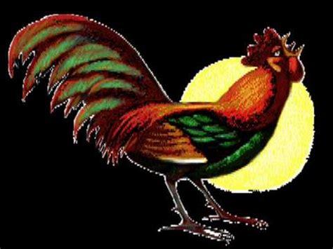 imagenes graciosas con movimiento para celular tono gracioso para celulares quot el gallo madrugador quot youtube