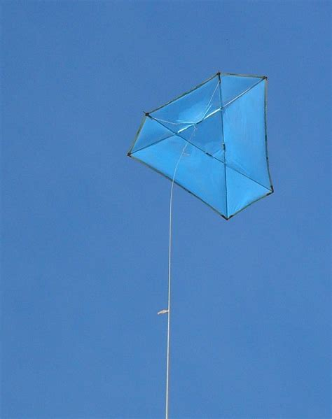 Flight Report Multi Dowel Barn Door Kite Rough As Guts Barn Door Kite