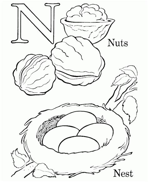 coloring sheet bird s nest bird nest coloring page coloring home