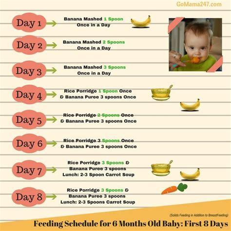 when do babies start table food 17 best ideas about baby feeding chart on baby