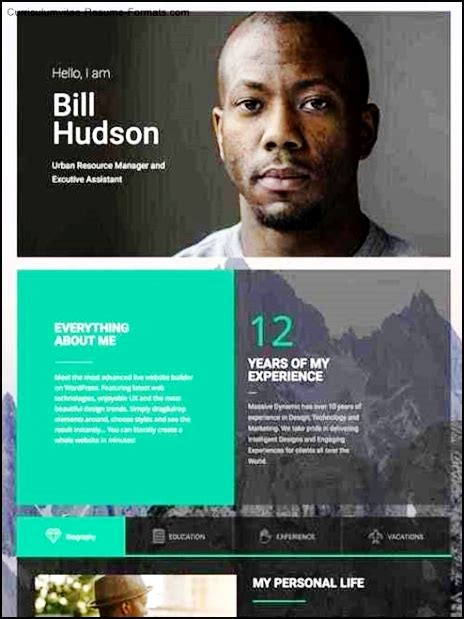Personal Resume Website Template by Personal Resume Website Template Free Sles Exles