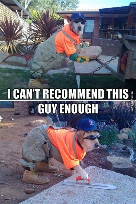 Handyman Meme - handyman dog working around the house http mbinge co