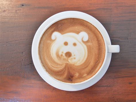 friendly coffee shops 7 great friendly coffee shops in chicago windy city paws