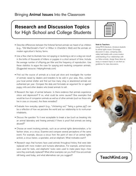 Debate Topics For Mba Students by Animal Rights Essay Topics How To Write College Admissions