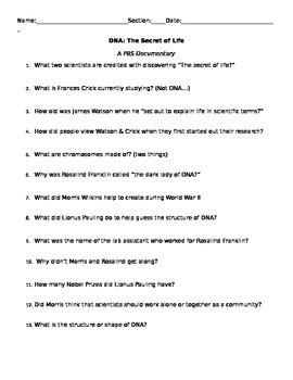Dna The Secret Of Worksheet dna the secret of worksheet worksheets for school