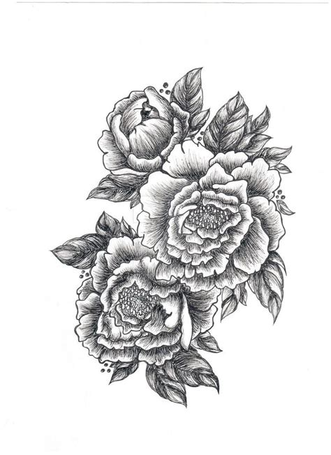 peonies tattoo designs peony drawing search drawings