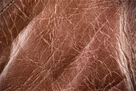 reparer griffe de sur canape en cuir comment reparer les griffes de sur un canape en cuir