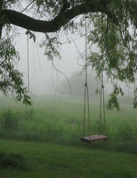 tree swing tree swing there is beauty all around pinterest