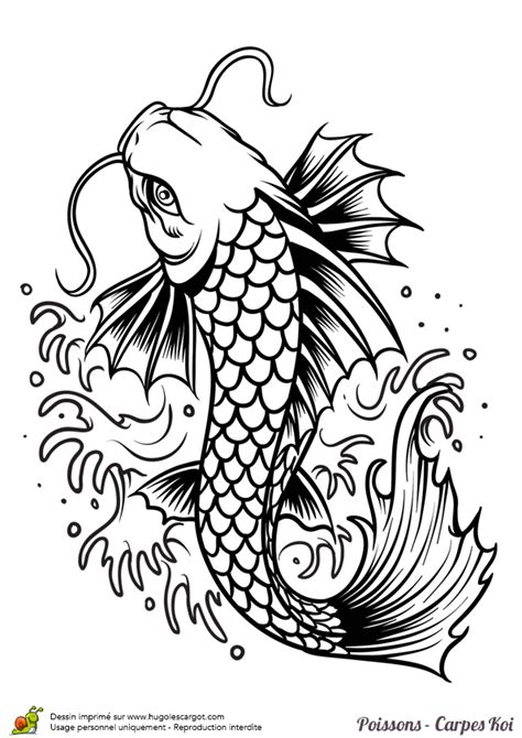dragon fish coloring page dragon fish coloring pages coloring pages