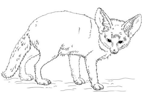 coloring pages fennec fox coloriage fennec coloriages 224 imprimer gratuits