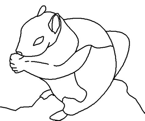 ground squirrel coloring page coloring books by connected lines