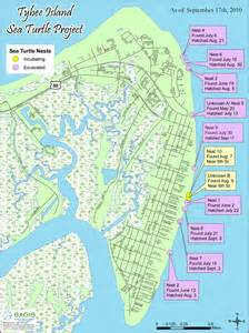 sea turtles mermaid cottages on tybee island ga page 3