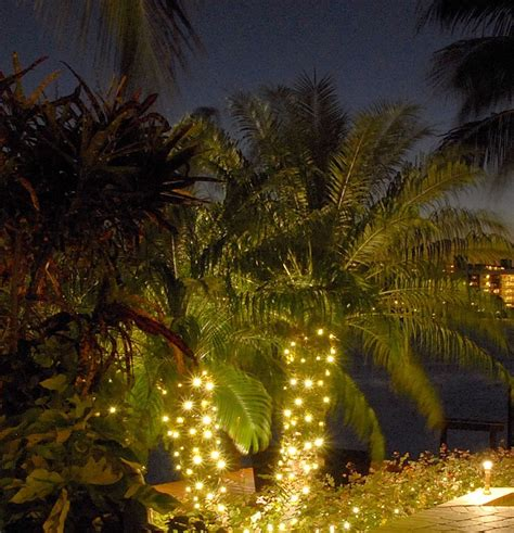Outdoor Lighting Designs For Your Fire Pit Area Outdoor Lights Trees