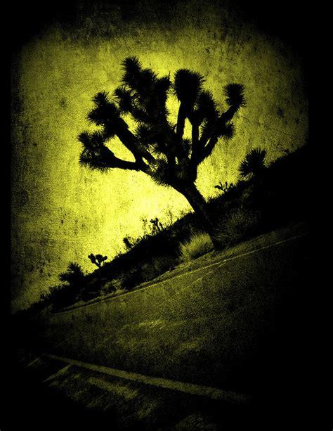 black and yellow tree black and yellow joshua tree poster mixed media by noemy o
