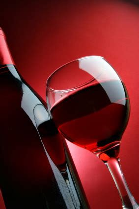 20 red wines under $20 > nat's conscious coupling of