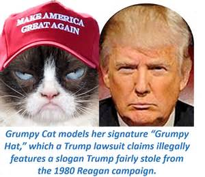 grumpy cat for president 2016 scaramouche another doppelg 228 nger